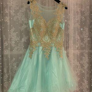 Nwt Anny Lee Prom Dress M